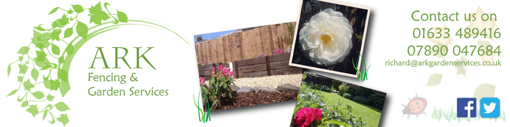 Ark Fencing and Garden Services