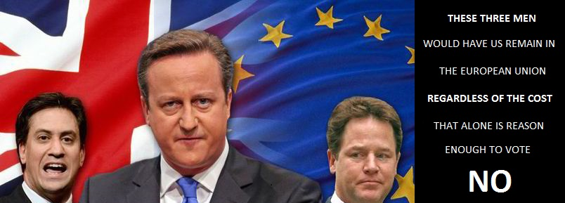Cameron Referendum Banner