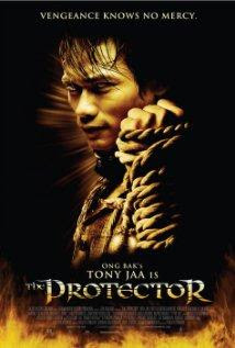 descargar The Protector – DVDRIP SUBTITULADA