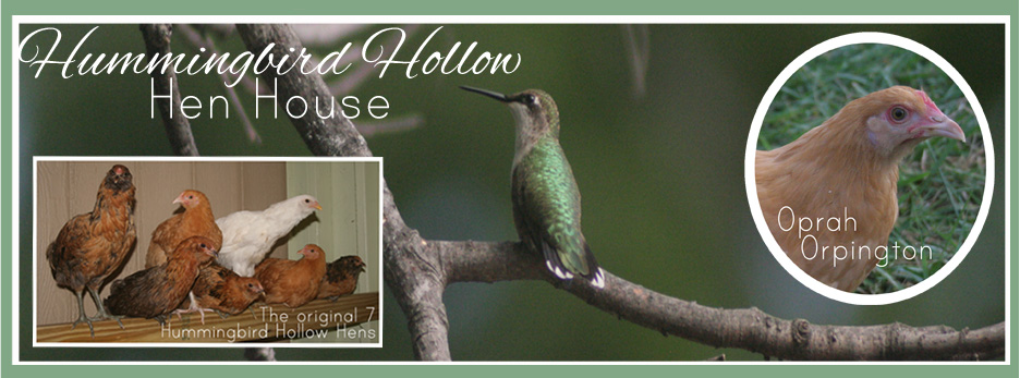 Hummingbird Hollow Hen House