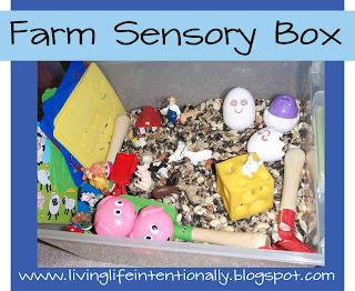 Farm Sensory Box