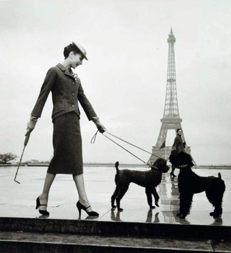 Audrey Hepburn Dog Name