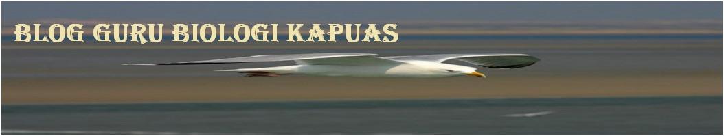 Blog Guru Biologi Kapuas