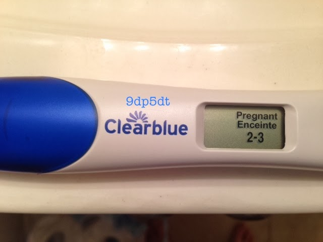the gallery for gt clear blue positive pregnancy test 1 2