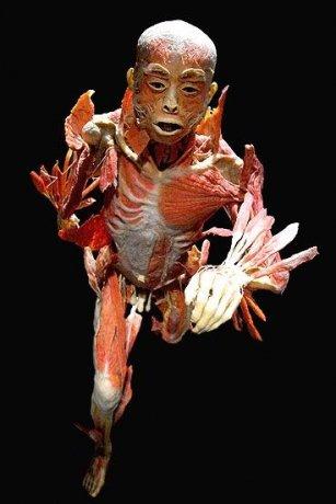 Human Nature Michael Jackson Download Skull