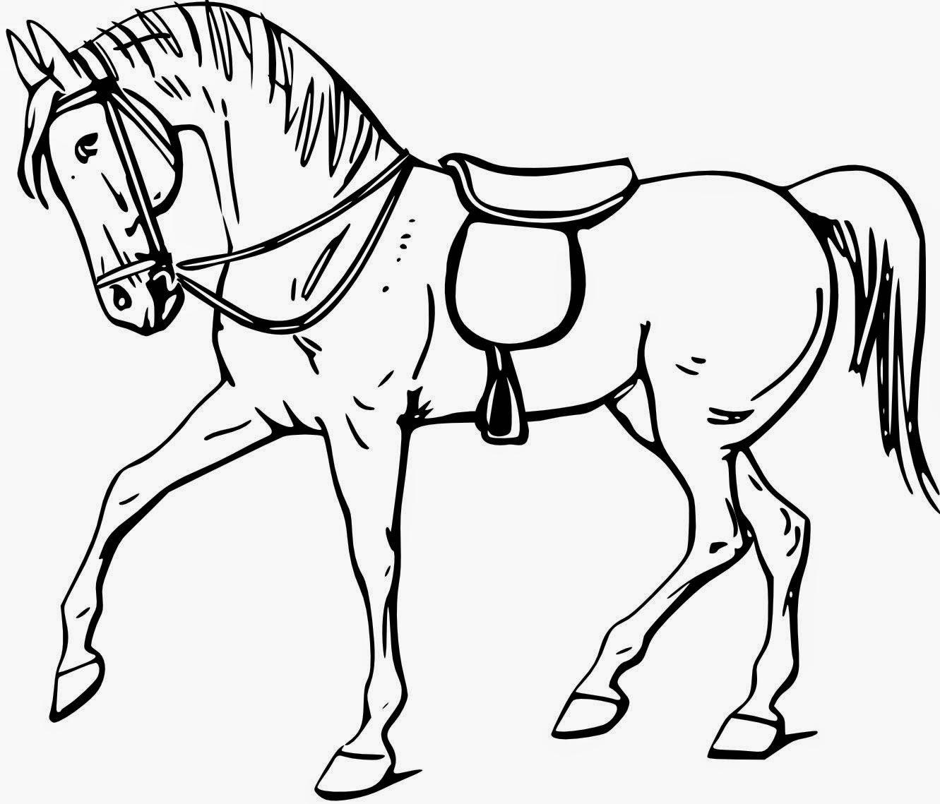 La Chachipedia Dibujos de caballos para colorear