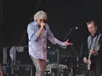 Bob Geldof at Latitude 2015