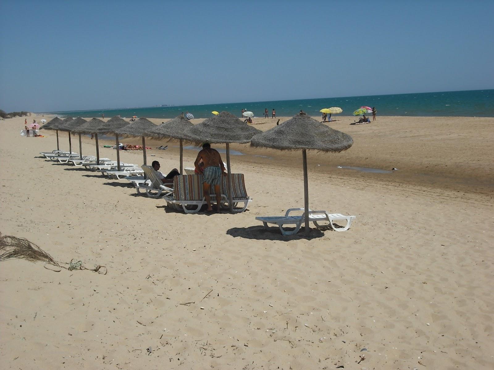 Playas de lepe hamacas y sombrillas hamacas sombrillas - Hamacas de playa ...