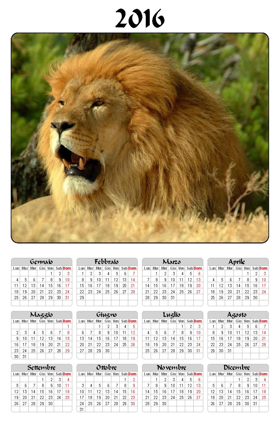 calendario 2016 leone