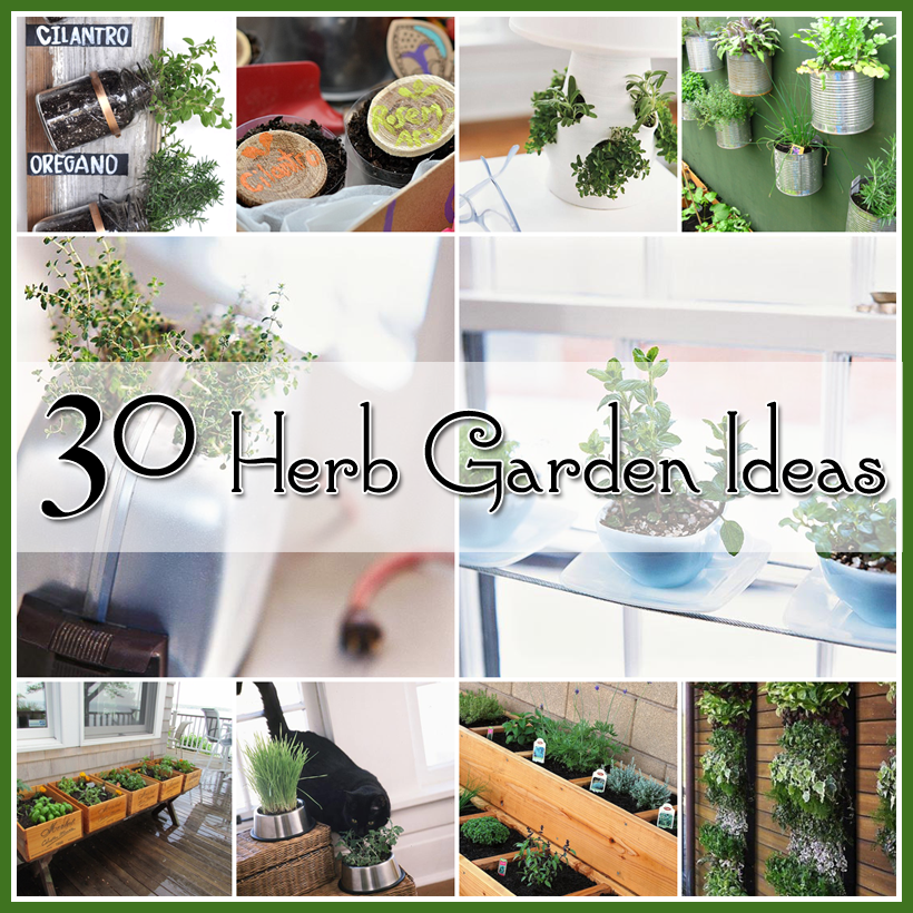 25 Flower Pot DIY's - The Cottage Market on creative beauty ideas, creative home landscaping, creative automotive ideas, creative and cheap decorating ideas, creative diy ideas, creative ideas for projects, creative ideas for shoes, creative literature ideas, creative history ideas, creative home books, creative t-shirts ideas, creative sports ideas, creative western decor, creative plumbing ideas, creative engineering ideas, homemade storage ideas, creative home bedroom, creative home kitchen, creative fitness ideas, creative ideas for old dresser,