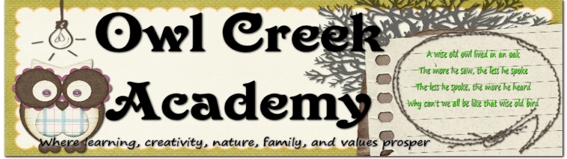 Owl Creek Academy