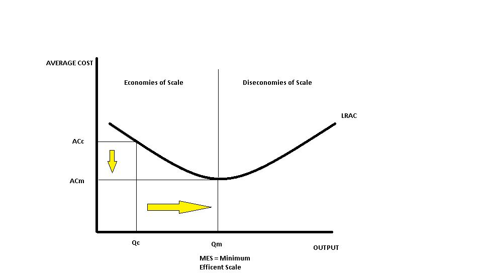 decions making economies of scale pdf