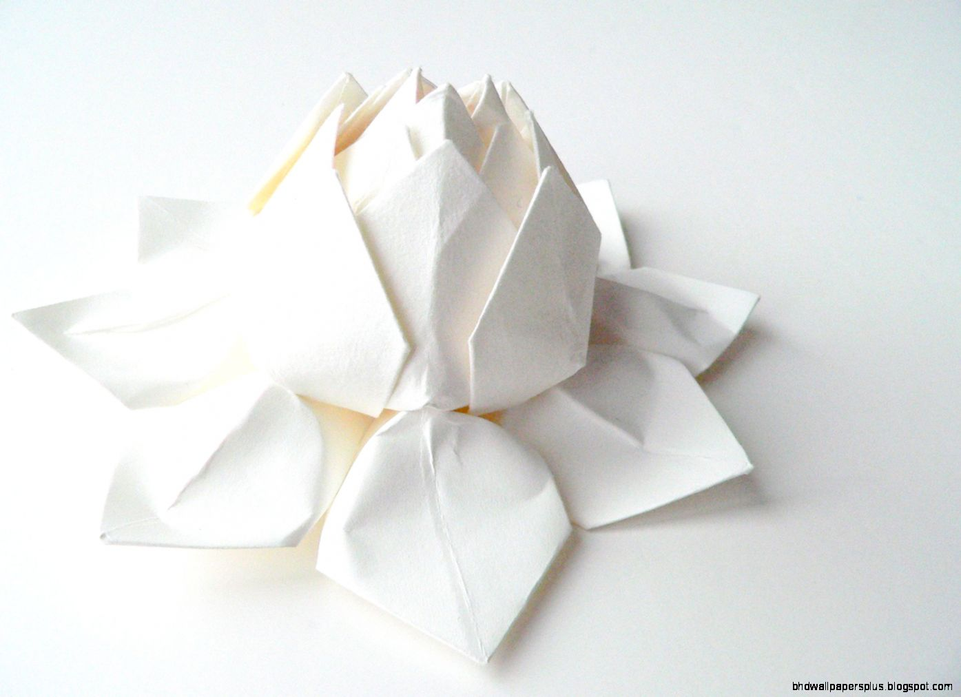 Popular items for origami lotus flower on Etsy