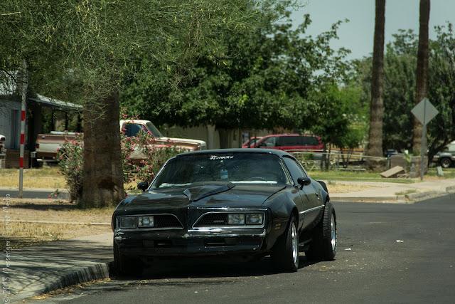 1977 1978 Pontiac Firebird