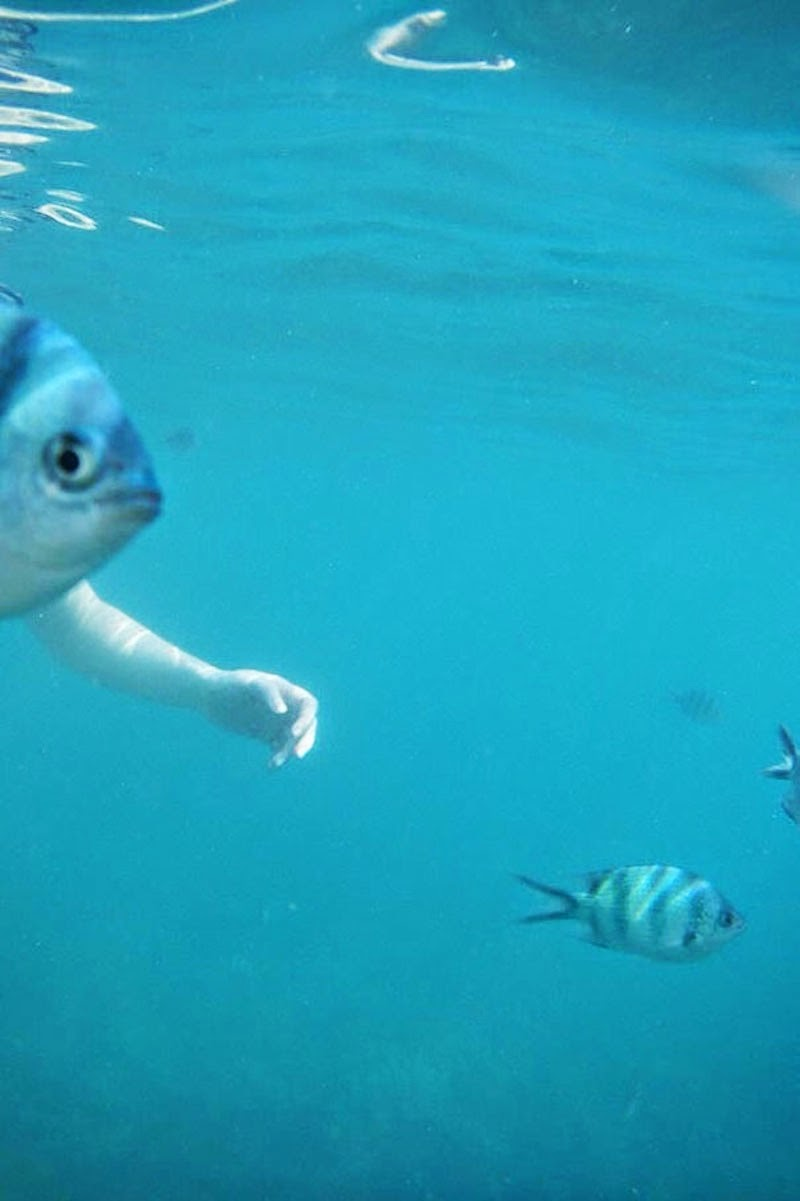 30 Pictures Taken At The Right Moment - You DON'T ever want to run into a fish with arms!