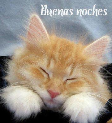 imagenes buenas noches feliz noche dulces sueños