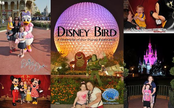 DisneyBird