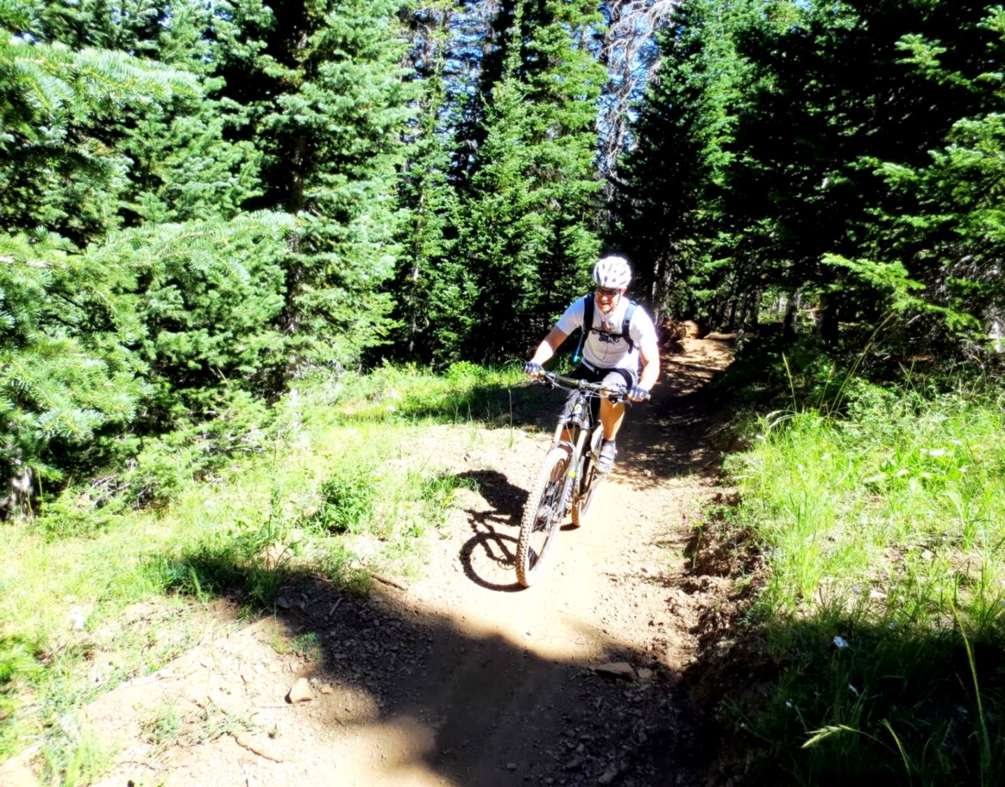 Mountain Bike Trails Park City Utah
