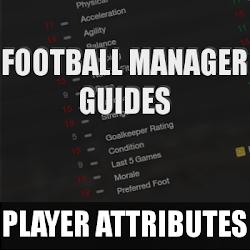 FM13 Player attributes