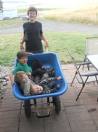 pile of boys, summer 2011