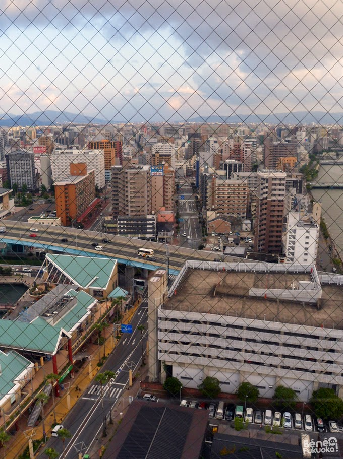 View of Fukuoka from Hakata Port Tower
