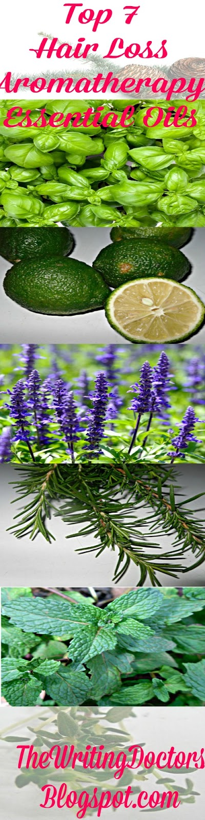 Top 7 Aromatherapy Essential Oils for Hair Loss