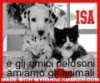 Il blog di Isa