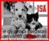 Il blog di Isa
