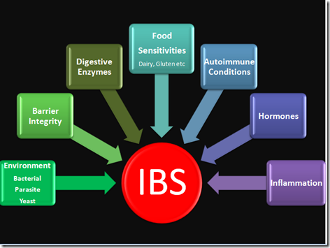 probiotics and ibs ppt