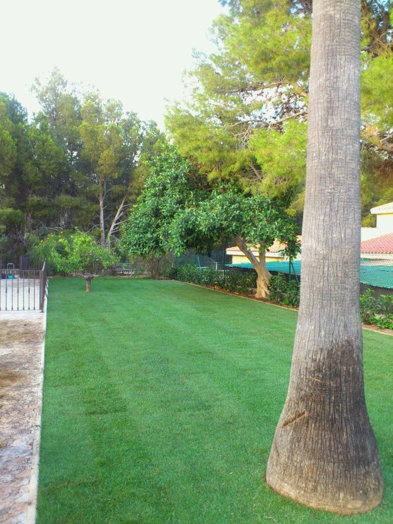verdeando jardiner a benidorm jardineros alicante