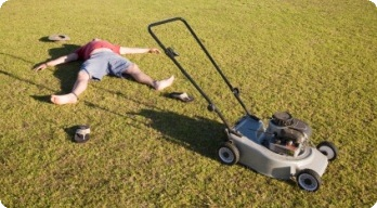 modern natural beware of your lawn its out to get you