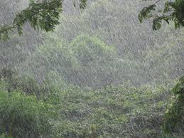 natural scenery of bangladesh rainy season of bangladesh