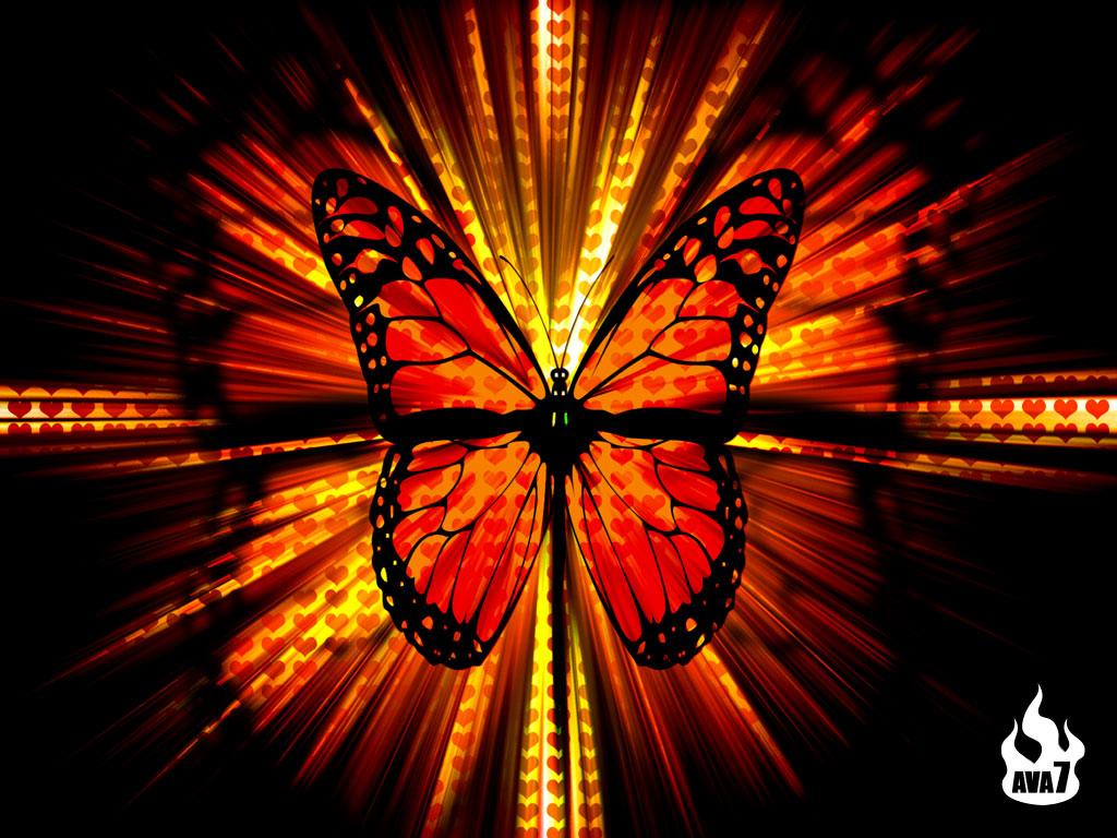 http://3.bp.blogspot.com/-L-ubzqI-a2c/T0-Acd2owBI/AAAAAAAABo0/myPQbmu9eZQ/s1600/Butterfly-wallpaper-butterflies-604274_1024_768.jpg