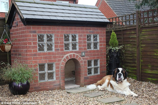 Build Outdoor Dog Kennel House
