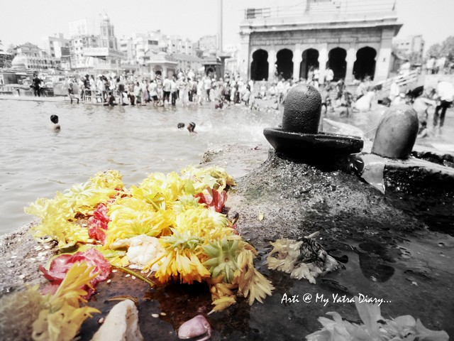 Flowers at Godavari River Ghat, Nashik