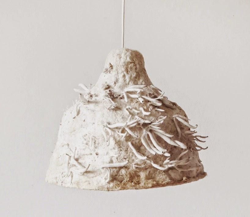 Lampes à base de champignons et de fibres végétales