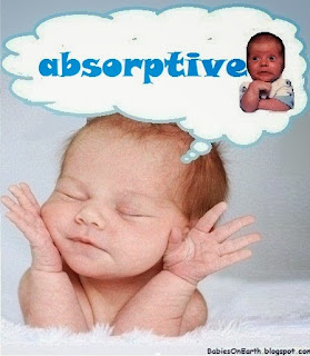 absorptive