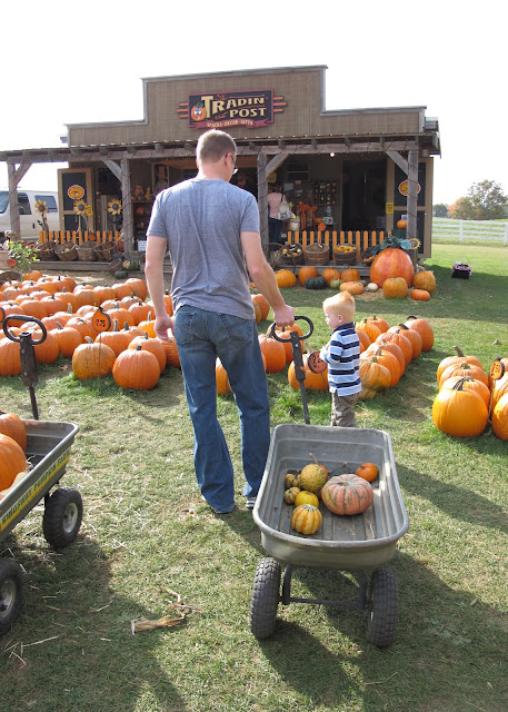 Daddy & Porter at Kingsway Pumpkin Farm