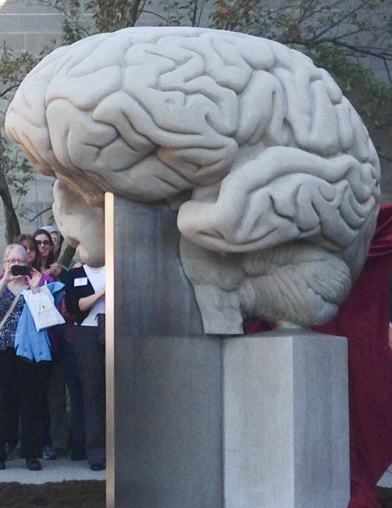 Indiana limestone is shaped into an anatomically correct brain. Designed by Amy Brier. Located in Bloomington, IN.