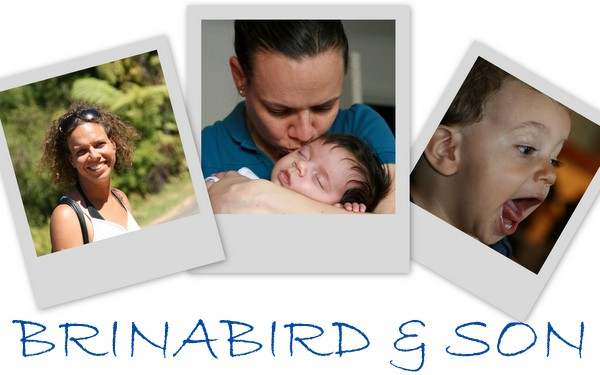 Brina Bird and Son