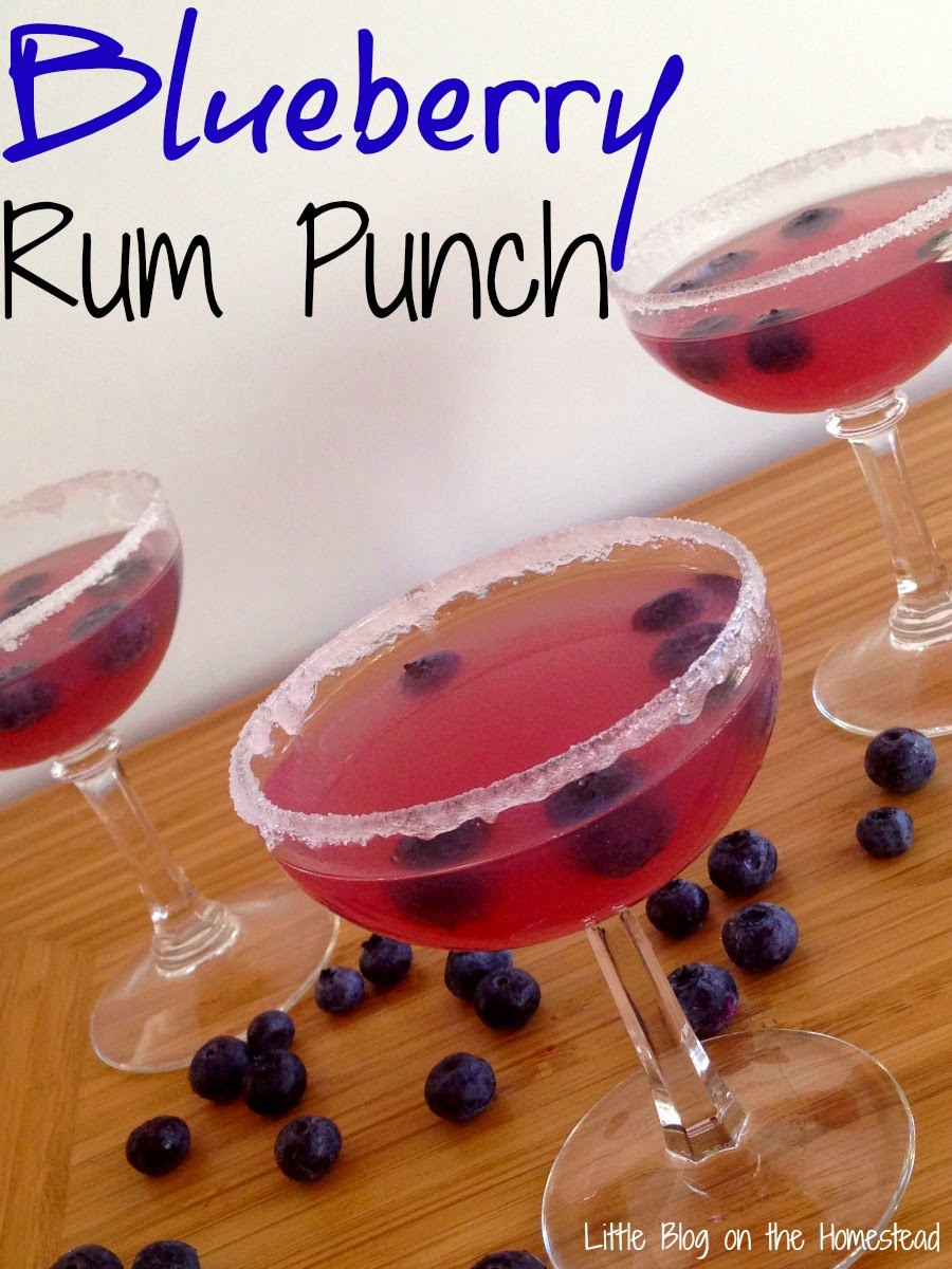 Blueberry Rum Punch, shared by Little Blog on The Homestead