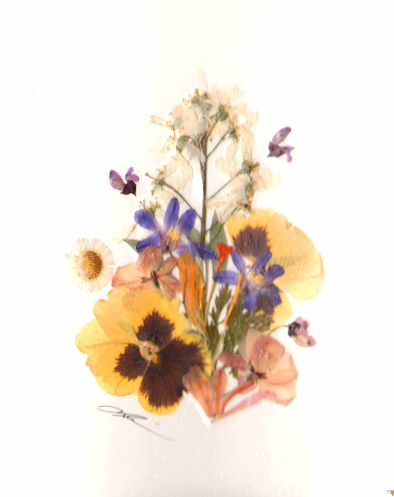 Canada Floral Delivery Blog Making Beautiful Pressed Flower Gifts