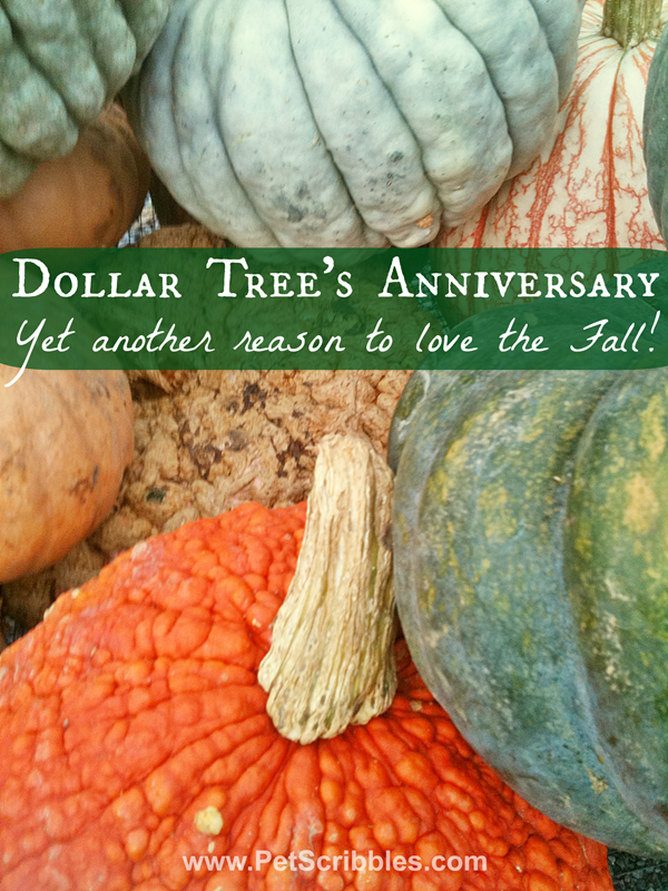 Dollar Tree's Anniversary: yet another reason to love the Fall!