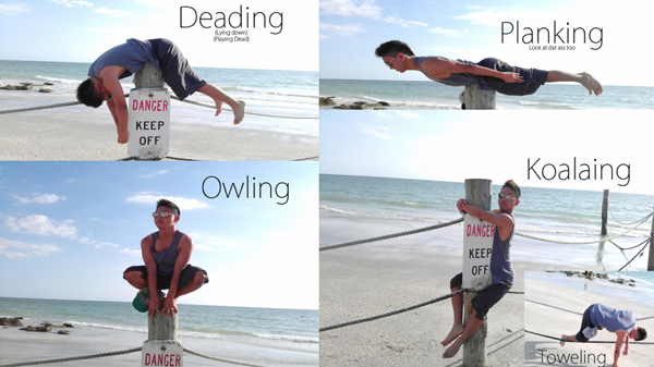 planking,owling
