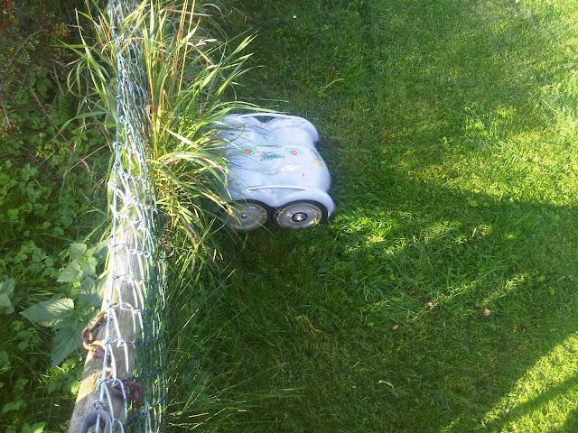 Wiper Rasen-Roboter fährt gegen ein Hindernis...
