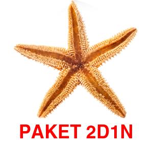 PAKET 2D1N DENGAN SPEEDBOAT