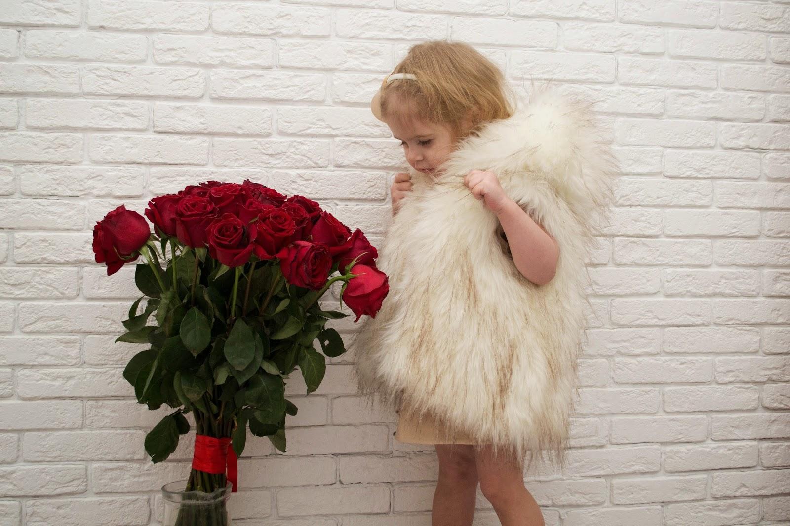 комнатный красный цветок фото