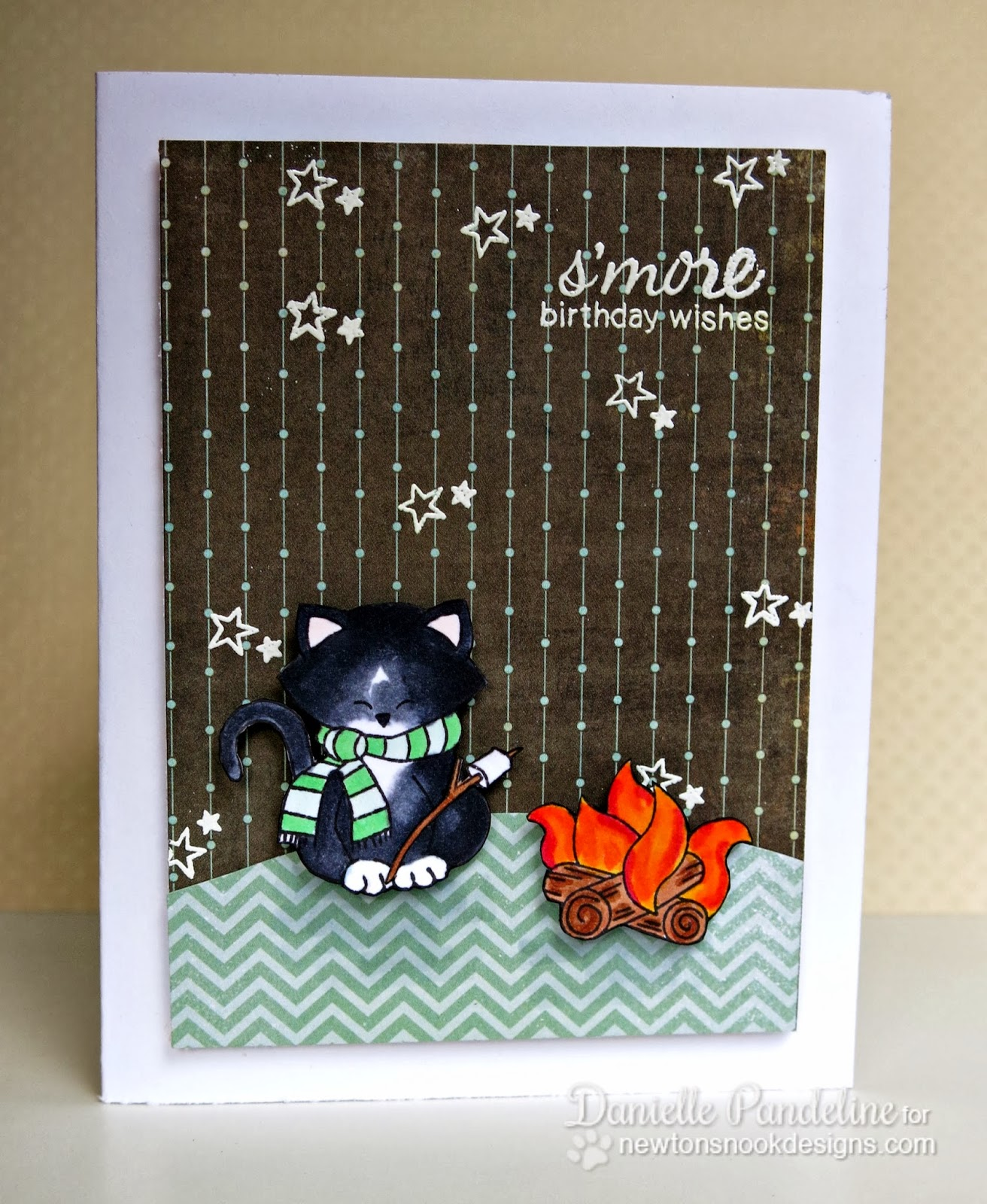 Campfire Birthday card by Danielle Pandeline for Newton's Nook Designs