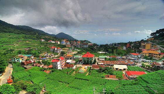 Tam đảo ( Vĩnh Phúc)