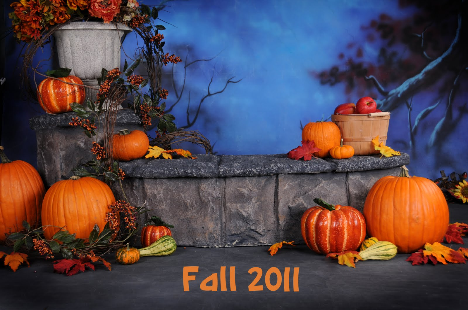 fall halloween 2011 now booking